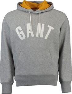 Gant Graphic Sweat Hoodie grey melange